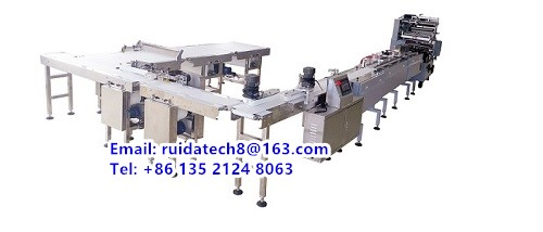 10. Automatic Feeding Packing Line - 副本